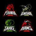 Furious Piranha, Ram, Snake And Dinosaur Head Sport Vector Logo Concept Set  On Black Background. Stock Images - 97353884