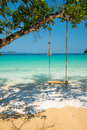 Swing Hang On Big Tree Over Beach Sea Stock Images - 97389624