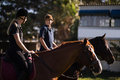 Friends Talking While Sitting On Horse At Barn Royalty Free Stock Image - 97408316