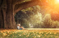 Little Boy Reading A Book Under Big Linden Tree Stock Photo - 97431050