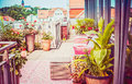 Pretty Summer Terrace Or Balcony Of  Penthouse With Flowers Patio Pots Stock Image - 97449751