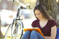 Student Learning Memorizing Notes Outdoors Stock Images - 97483374