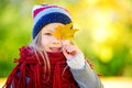 Cute Little Girl Having Fun On Beautiful Autumn Day. Happy Child Playing In Autumn Park. Kid Gathering Yellow Fall Foliage. Royalty Free Stock Images - 97533259