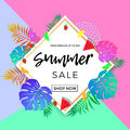 Summer Sale Poster Of Fruits And Palm Leaf Vector Online Shopping Banner Royalty Free Stock Photo - 97536135