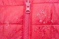 Close-up Of Red Jacket With Zipper Royalty Free Stock Photos - 97560718