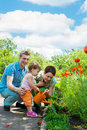 Family Watering Flowers Royalty Free Stock Image - 9764236