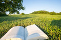 Reading A Book In A Park In The Nature, Point-of-view-shot. In Bavaria, Germany. Royalty Free Stock Image - 97629586