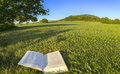Reading A Book In A Park In The Nature, Point-of-view-shot. In Bavaria, Germany. Stock Image - 97629691