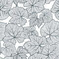Vector Seamless Pattern With Hand Drawn Grape Textured Leaves. Black And White Autumn Nature Background. Stock Images - 97636634