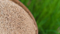 Jasmine Rice Seeds In Bamboo Basket With Green Rice Plant Field Stock Images - 97682024