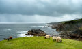 Achill Head In County Mayo On The West Coast Of Ireland Royalty Free Stock Image - 97746746