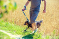 A Man With A Dog Runs Through The Oat Field Stock Photography - 97904092
