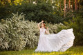 Beautiful Redhead Bride In Fantastic Wedding Dress In Blooming Garden. Stock Photography - 98102842