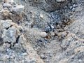Stones In The Sand Stock Photo - 98116910