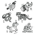 Animals Alphabet Q - U For Children. Vector Coloring Page Royalty Free Stock Photography - 98188477