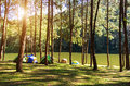 Adventures Camping And Tent Under The Pine Forest Near Water Outdoor In Morning And Sunset At Pang-ung, Pine Forest Park , Mae Hon Royalty Free Stock Images - 98225339
