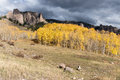High Mesa Pinnacles In Cimarron Valley Colorado. Stock Photo - 98475620