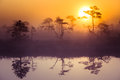 A Beautiful, Dreamy Morning Scenery Of Sun Rising Above A Misty Marsh. Colorful, Artistic Look. Stock Photos - 98509693
