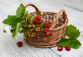 Wild Strawberries Royalty Free Stock Images - 98665579