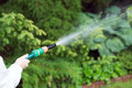 Watering The Garden Royalty Free Stock Images - 98666509