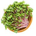 China Rose Radish Sprouts In Wooden Bowl Stock Photography - 98674952