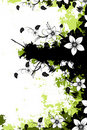Grunge Floral Background With Copyspace Stock Image - 9874661