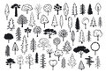 Doodle Park Forest Conifer Abstract Silhouettes Outlined Trees Stock Image - 98719421