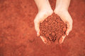Hands Of People Holding Soil To Grow Young Plant. Ecology And Gr Stock Photo - 98798570