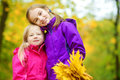 Two Cute Little Girls Having Fun On Beautiful Autumn Day. Happy Children Playing In Autumn Park. Kids Gathering Yellow Fall Foliag Stock Photos - 98808663