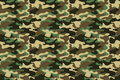 Camouflage Seamless Pattern Background. Horizontal Seamless Banner. Classic Clothing Style Masking Camo Repeat Print. Green Brown Stock Photo - 98826040