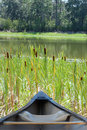 Canoe  Cattails Royalty Free Stock Images - 9895009