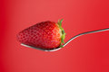 Strawberry On A Fork Stock Photo - 98900560