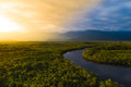 Aerial View Of A Rainforest In Brazil Stock Image - 98933711
