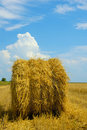 Harvest Time Royalty Free Stock Photo - 998245