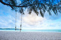 Wooden Swing On The Blue Sea In The Morning Royalty Free Stock Photography - 99019487