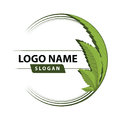 Cannabis Green Leaf Logo. Stock Photography - 99047682