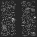 Cute Doodle Cats, Kitty Domestic Cats Vector Sets With Cute Kittens For Pet Shop, Cattery, Veterinary Clinic Doodle Stock Image - 99069791