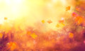Fall Background. Autumn Colorful Leaves Royalty Free Stock Images - 99090759