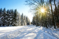 Winter Trees And Road In German Forest With Sunshine. Royalty Free Stock Photo - 99107555