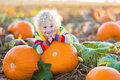 Child Playing On Pumpkin Patch Royalty Free Stock Image - 99107596