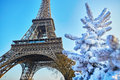 Christmas Tree Covered With Snow Near The Eiffel Tower In Paris Stock Image - 99156271