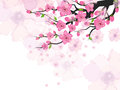 Chinese New Year Card With Plum Blossom Royalty Free Stock Image - 99276836