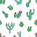Natural Seamless Pattern With Hand Drawn Green Cactus On White Background. Blooming Mexican Desert Plants. Botanical Royalty Free Stock Photos - 99277358