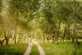 Adult Woman Is Walking In The Forest Royalty Free Stock Photography - 99284867