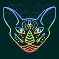Rainbow Cat Face Vector Sacred Animal Of Ancient Egypt, Mystical Cat Face With Egyptian Hieroglyphic Symbols Hand Drawn Egyptian C Stock Photos - 99494083