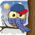 Cute Owl On A Brunch Stock Images - 99689684