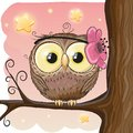 Cute Owl On A Brunch Royalty Free Stock Photography - 99689827