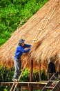 Man With Blue Shiet Standing On Bamboo Stairs Making Thatch Roof Stock Photos - 99742943