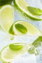 Leaf Mint And Cut Citrus Royalty Free Stock Photos - 9988858