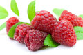 Ripe Raspberry With Mint Leaves Royalty Free Stock Photos - 9991198